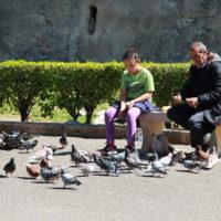 05-Nina-Gaspare-il-suo-padrone-e-i-piccioni-Palermo-2017-foto-DS-Shines