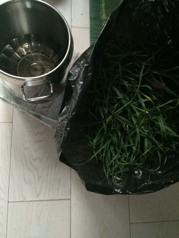 2-preparazione-acque-distillate