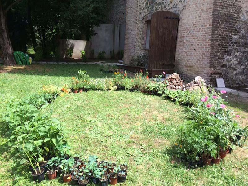 7-cerchio-di-piante